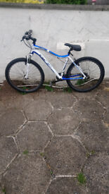 CBR Hardtail mountain bike in excellent conditiong 26inch wheels ready to ride £130