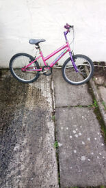 Girls Concept Calypso Bike Needing Nothing Very Clean £25