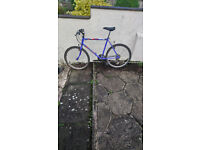 Adult and Womens bicycles all working perfect £35 per bike