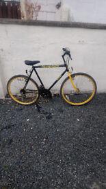Amtrek mens bike in very good order for age good tyres and brakes £55