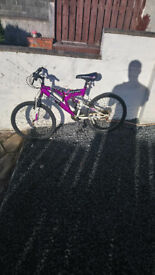 Girls Teen Dunlop Bike lovely bike needs nothing £40