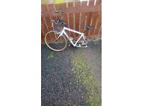 Adult btwin racing bike carbon frame bike the bike is in mint order £50