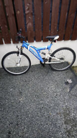 Adult blue probike in lovely order needing nothing £40