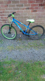 Teenager apollo bike lovely clean bike read to ride good brakes and tyres £70