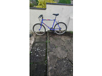 Adult Womens and mens bicycles all working perfect £35 per bike
