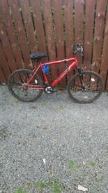 Mens apollo feud hardtail lovely bike comes with good tyres size 26 inch wheels £80