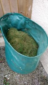 Grass Cuttings for Compost