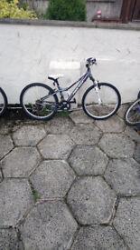 Bran New Procycle Venuse Like New Needing Nothing £60...