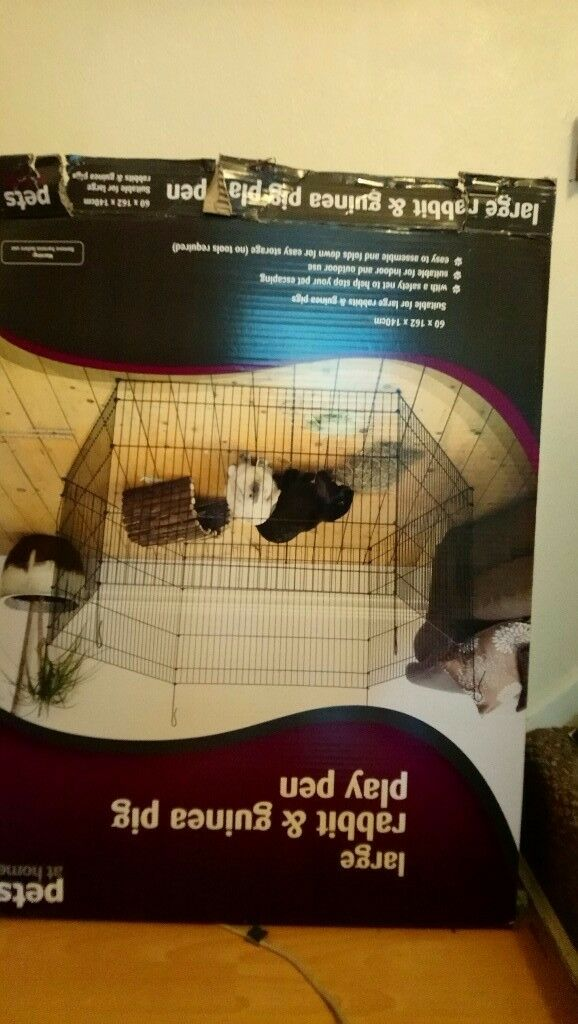 Rabbit , Guinea pig large playpen