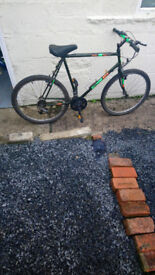 Adult Bicycle In Lovely Order Needing Nothing Lovely Condition £35...