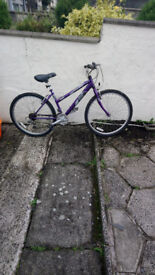 Raleigh Bike In Mint Order Like new comes with new tyres £40