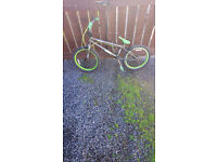 Scorpin BMX excellent condition it has just been serviced so ready to go £40