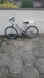 V1 Messina Olympia Bike Like New Needs Nothing £50....