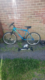 Asphalt spike unisex bike lovely condition nearly new comes with pump and helmet £75