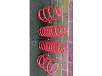 Ford Fiesta pro 40mm lowering coil spring
