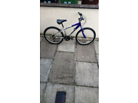 Boys Bicycles all in working order and good condition £35 per bike
