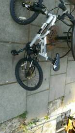 Boys Dunlop bike needs tlc and work been in garden sitting