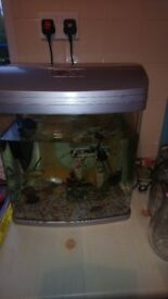 Fish tank now empty to light fish or contents