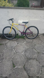 Like New Raleigh Mens Bike Unbeliavable Condition for age £55.....