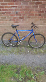 3 adult mens bike all working perfect £50 pounds each