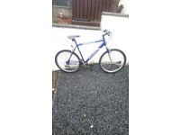 Mens adult raleigh bike 27.5 inch frame in mint order needing nothing £60