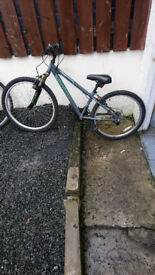 Apollo Teenager Hardtail Bike In Lovely Order Needs Nothing £25..