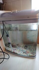 Fish tank Christmas present
