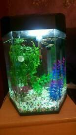 Small 21.6L fish tank for sale