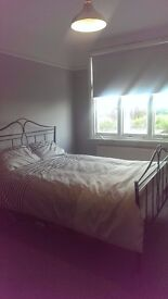 Lovely double room in house share 10 mins from Turnpike Lane tube 130pw inc bills