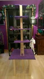 Rat play tower