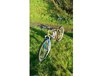 Kona Caldera mountain bike
