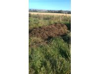 FREE WELL ROTTED HORSE MANURE