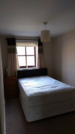 Double room to rent in New Gorbals area, all mod cons, owner occupied, Sky TV, b/band etc