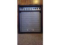 Washburn BD30B Bass Amp