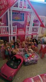Barbie house, dolls, accessories, unicorn and car