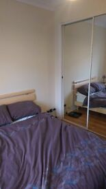 Large Double Room to Let, Colinton Mains
