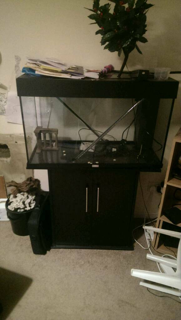 Swapping 3 juwel fish tankin Liverpool, MerseysideGumtree - Juwel Rio 125 complete with cabinetJuwel Rio 240 no cabinet no lid but with arcadia lightingJuwel record 800 with lid and own original light...And loads of extras external filtres, fake rocks 9kg black sand New filter sponges
