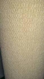2 Beige carpets brand new