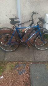 2 bikes spares