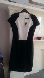 Brand New Work dress