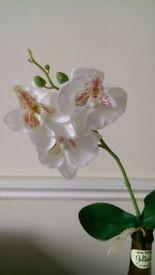 Plastic, Artificial flower orchid vivarium decoration