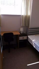 Single room fully furnished to rent