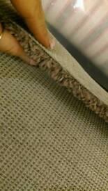 Very thick chocolate new carpet 5m X 2.8m
