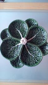 Cabbage Dish