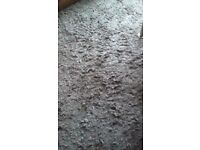 Extra large rugs, shaggy pile, caress mink, 200x300, from smoke and pet free home.