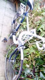 "Big men""s road bike"