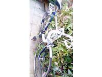 """men""""s road bike"""