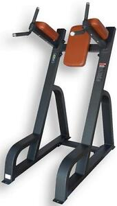 NEW eSPORT Direct Commercial Vertical Knee-Up / Dip Station eST1047