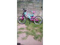 Girls mountin bike