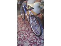 Mountain bike, 18 inch frame, 10 speed, Bought bike a year ago, never used , alloys wheels